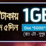 GP 1GB Night Pack 35Tk Offer
